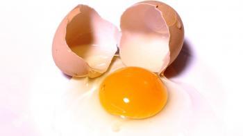 Bublanina z jednoho vejce