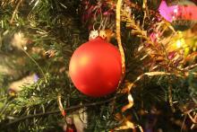 Pečený vánoční stromeček Ládi Hrušky za 64 Kč
