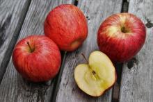 Retro jablkový perník